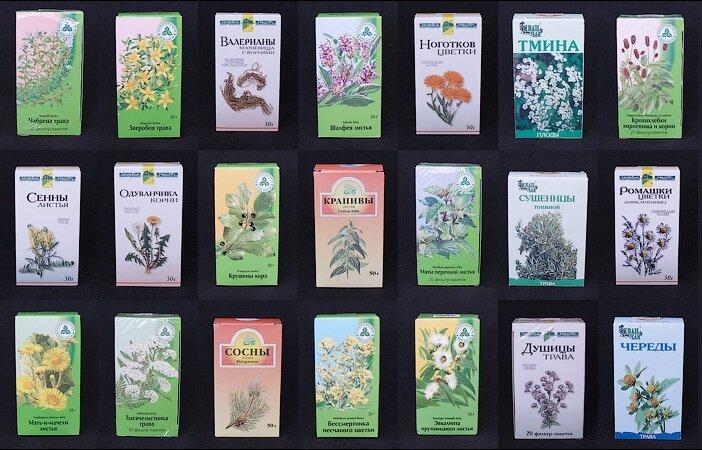 На фото: аптечные травы
