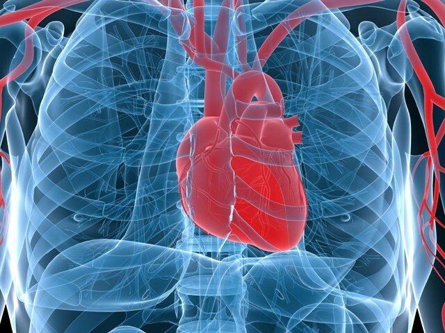 На фото: фимоз указывает на заболевания сердечно-сосудистой системы